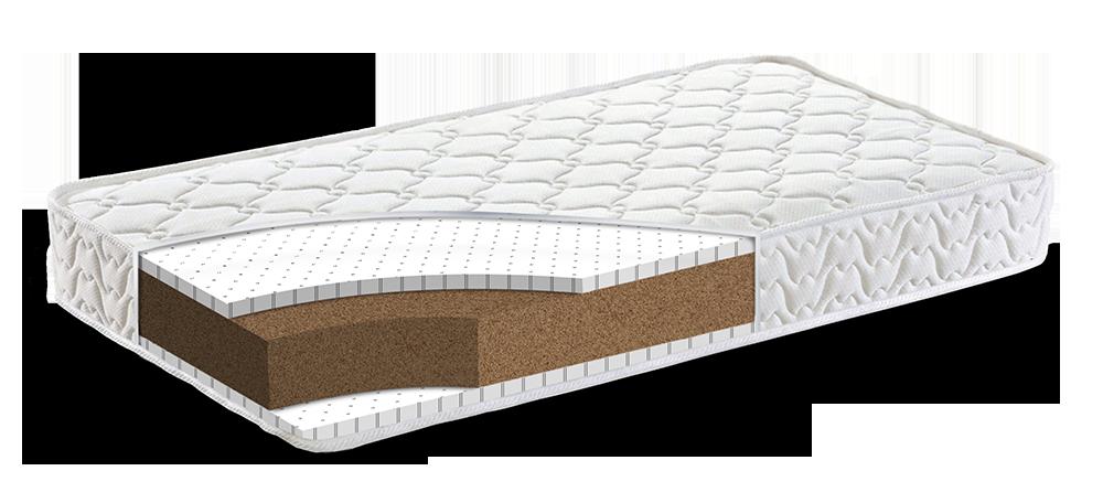 organic mattress firm